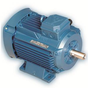 موتور الکتریکی موتوژن MOTOGEN